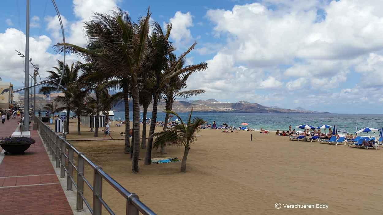 Playa de la capital las palmas gran canaria - Capital de las palmas ...
