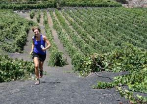 Wijnroute Gran Canaria Walking Festival