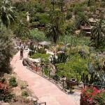 Palmitos-Park---Maspalomas---Gran-Canaria-2
