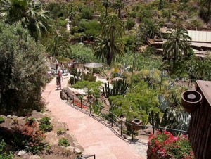Botanische tuin in Palmitos Park op Gran Canaria
