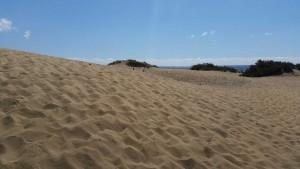 Duinen dichtbij het strand van Playa del Ingles