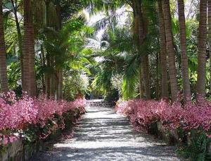 Jardin de la Marquesa in Arucas op Gran Canaria
