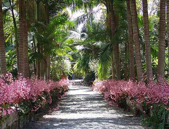 Tuin van de Markiezin (Jardin de la Marquesa) in Arucas op Gran Canaria