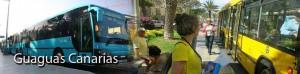 Openbaar vervoer Gran Canaria