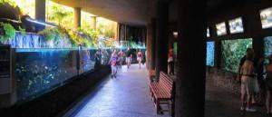 Palmitos park op Gran Canaria en het aquarium